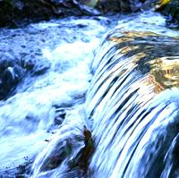 Lebendiges-Wasser